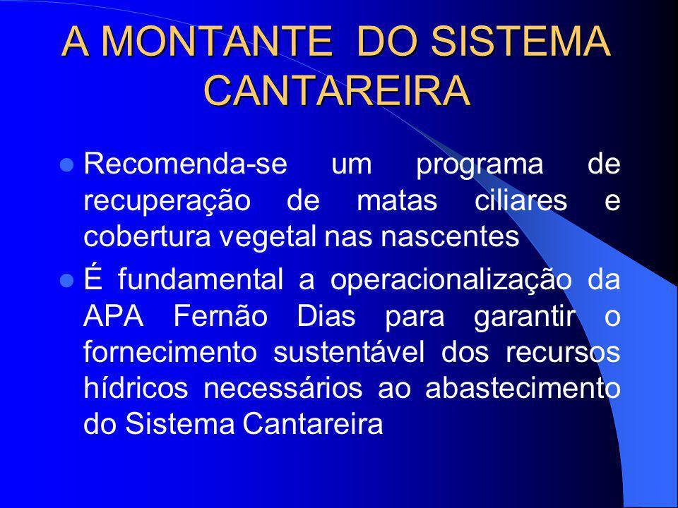 A MONTANTE DO SISTEMA CANTAREIRA