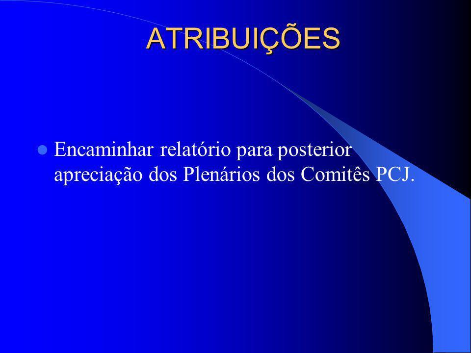 ATRIBUIÇÕES Encaminhar relatório para posterior apreciação dos Plenários dos Comitês PCJ.