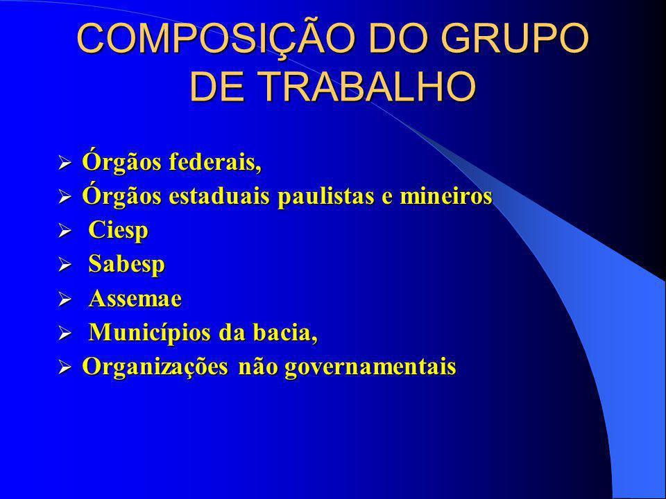 COMPOSIÇÃO DO GRUPO DE TRABALHO