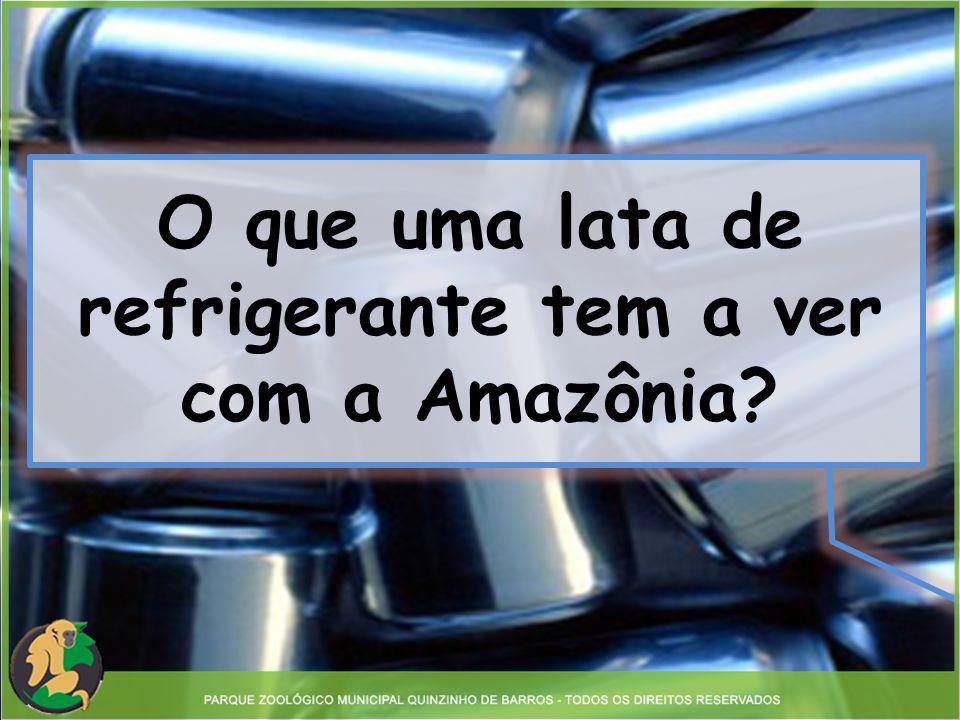 O que uma lata de refrigerante tem a ver com a Amazônia