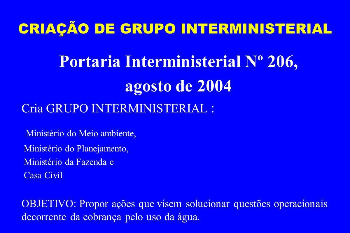 CRIAÇÃO DE GRUPO INTERMINISTERIAL