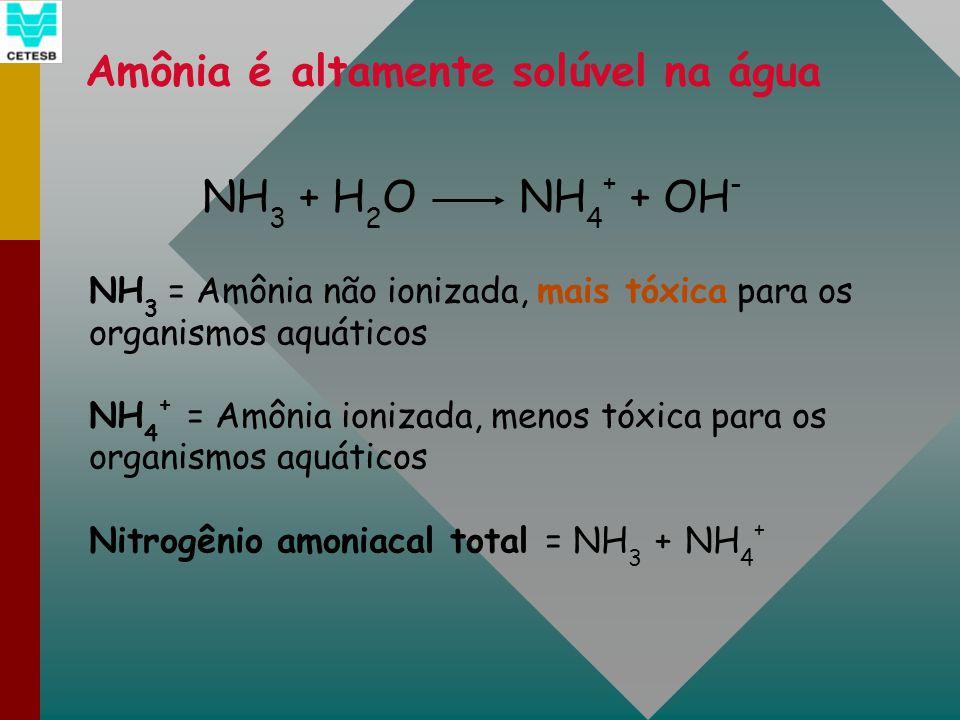 Amônia é altamente solúvel na água