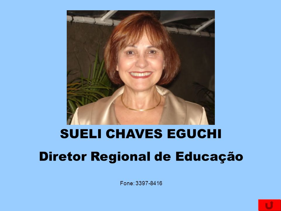 Diretor Regional de Educação