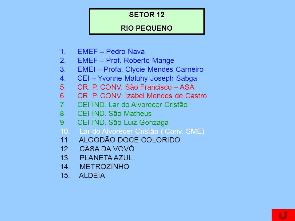 SETOR 12 RIO PEQUENO. EMEF – Pedro Nava. EMEF – Prof. Roberto Mange. EMEI – Profa. Clycie Mendes Carneiro.