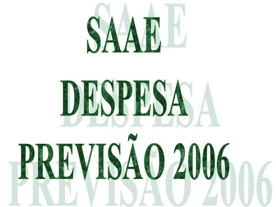 SAAE DESPESA PREVISÃO 2006