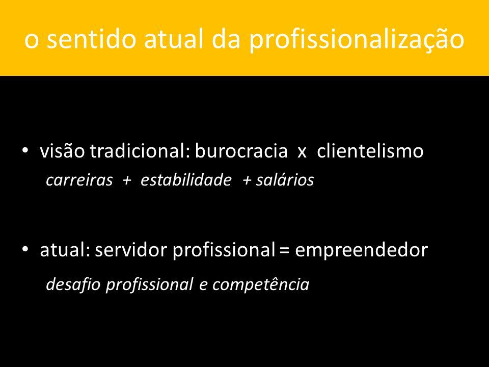 o sentido atual da profissionalização