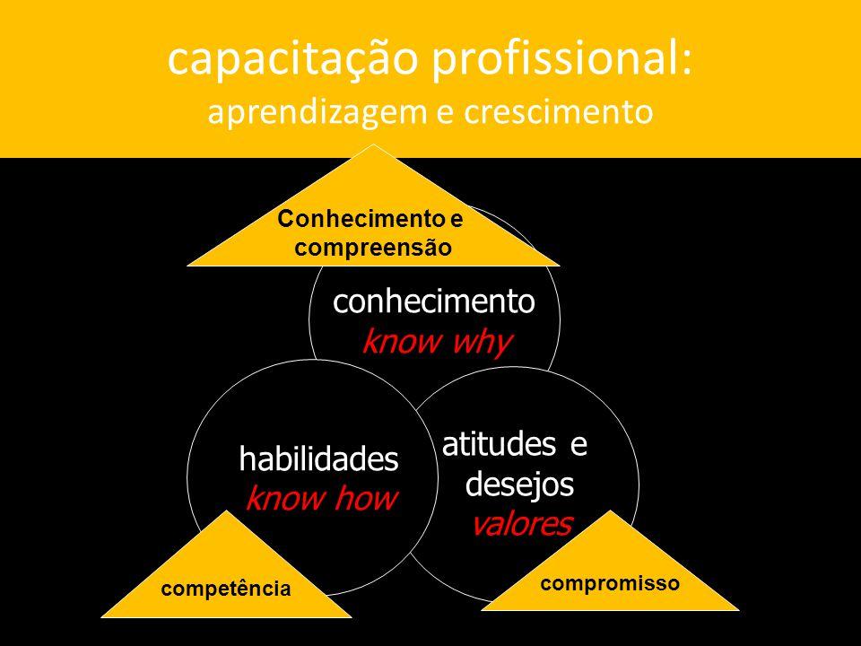 capacitação profissional: aprendizagem e crescimento