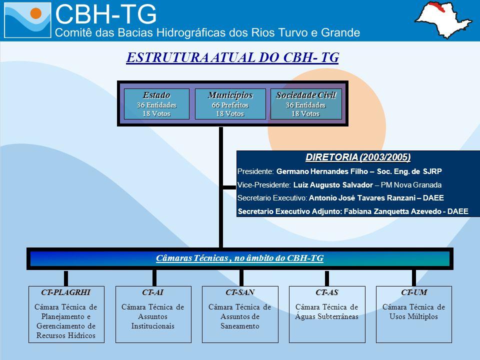 ESTRUTURA ATUAL DO CBH- TG Câmaras Técnicas , no âmbito do CBH-TG
