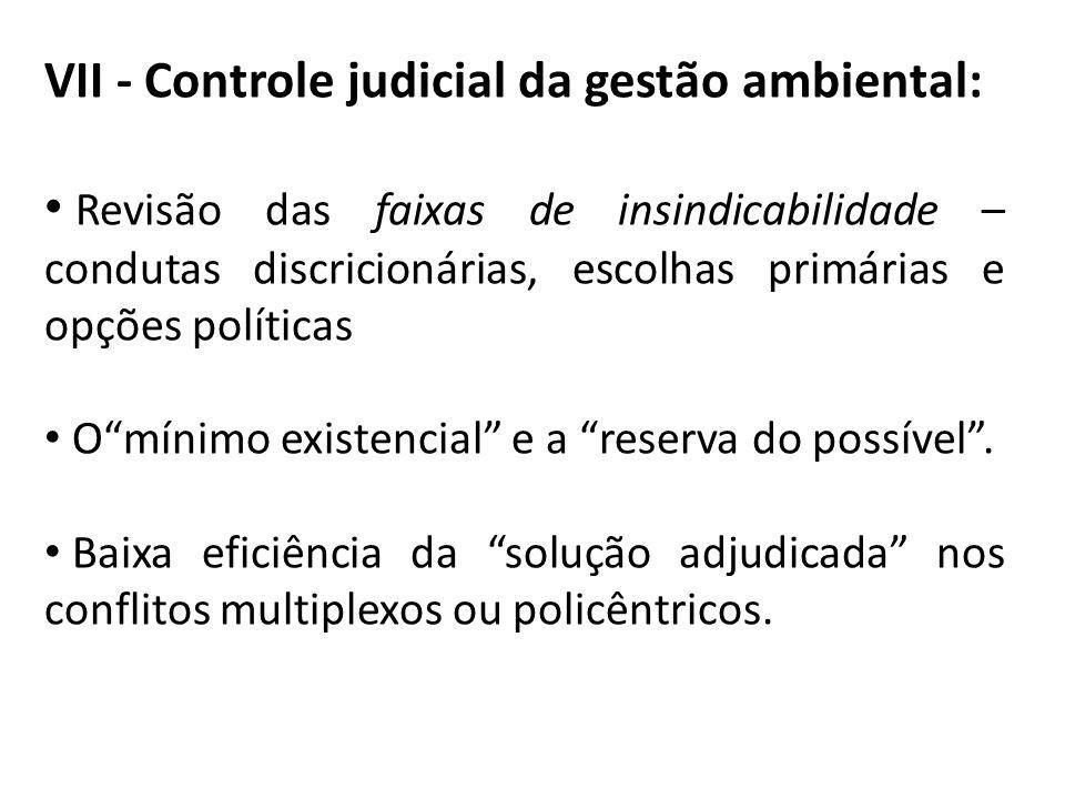 VII - Controle judicial da gestão ambiental: