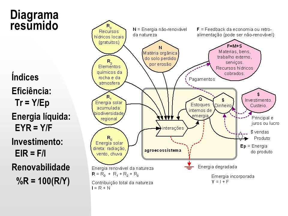 Diagrama resumido Índices Eficiência: Tr = Y/Ep
