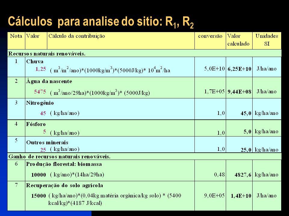 Cálculos para analise do sitio: R1, R2