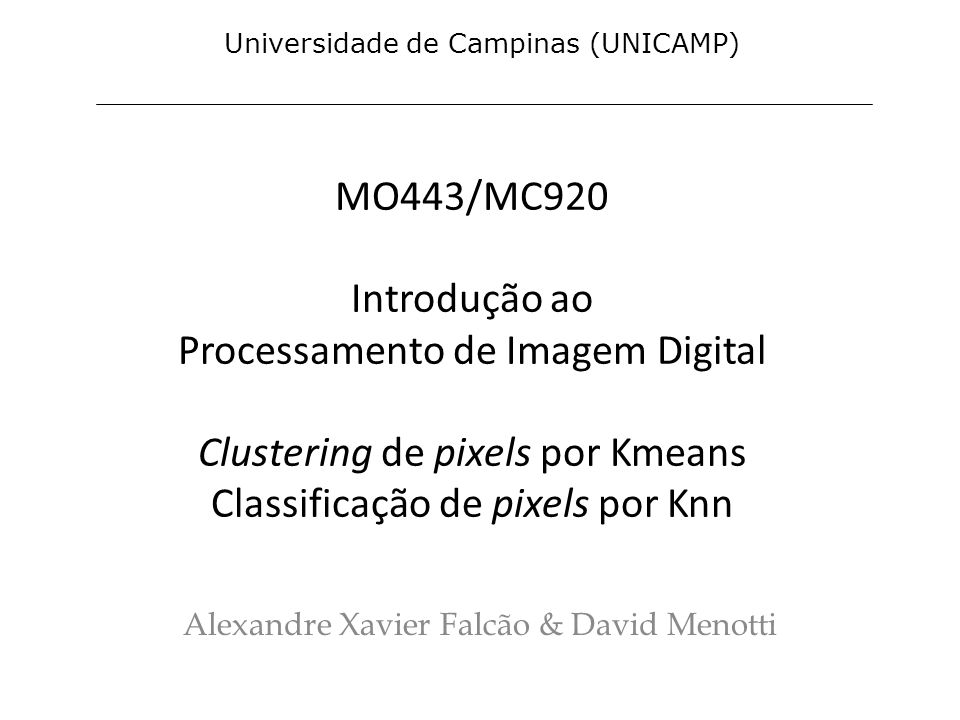 Alexandre Xavier Falcão & David Menotti