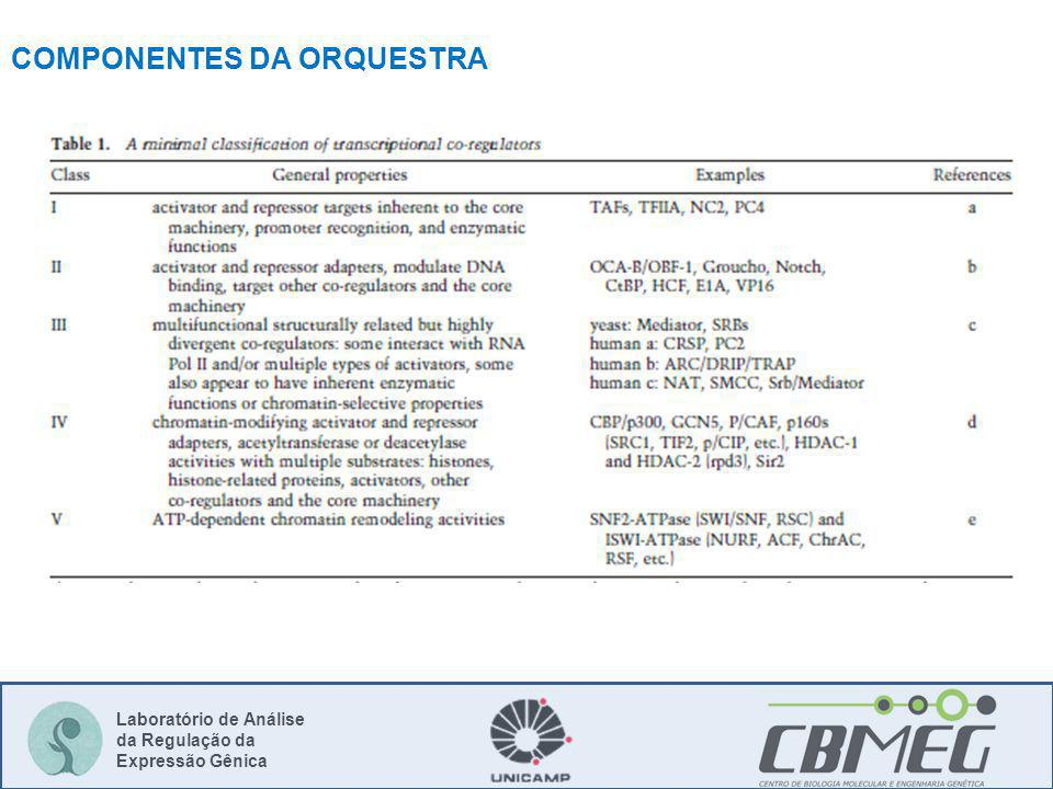 COMPONENTES DA ORQUESTRA