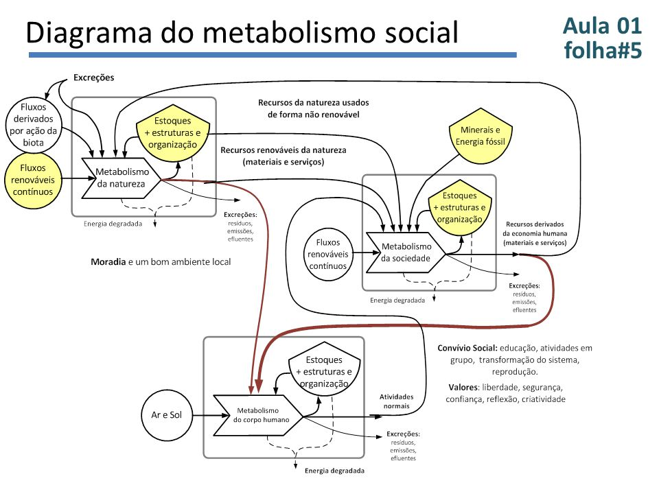 Diagrama do metabolismo social