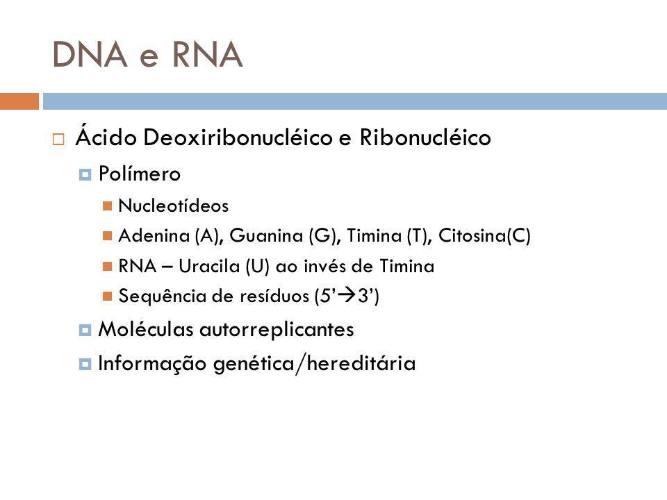 DNA e RNA Ácido Deoxiribonucléico e Ribonucléico Polímero