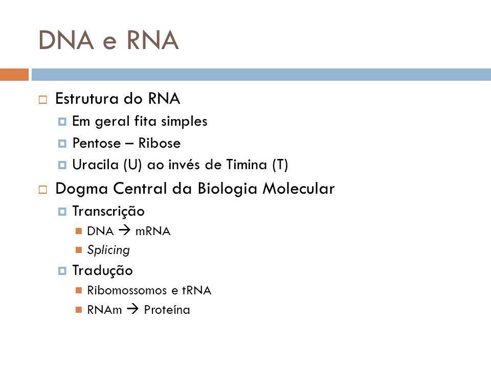DNA e RNA Estrutura do RNA Dogma Central da Biologia Molecular