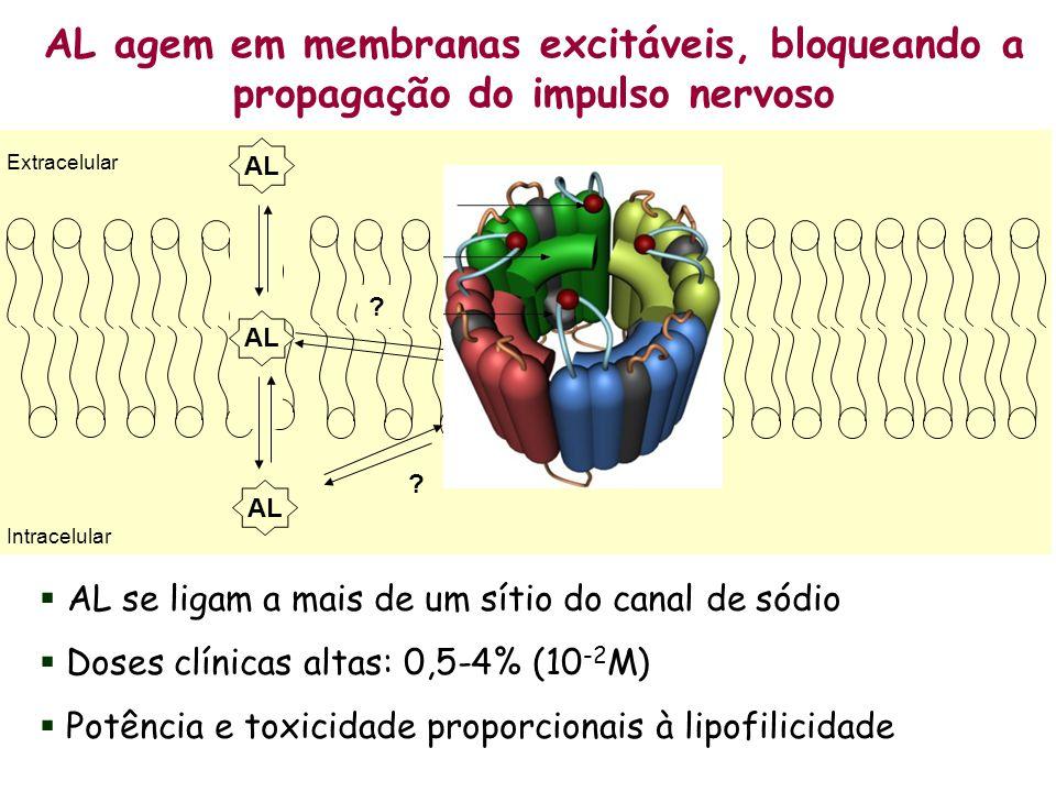 AL agem em membranas excitáveis, bloqueando a propagação do impulso nervoso
