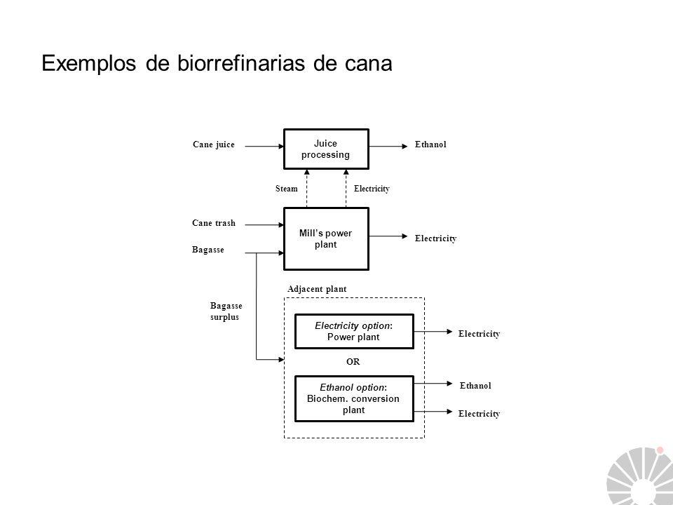 Exemplos de biorrefinarias de cana