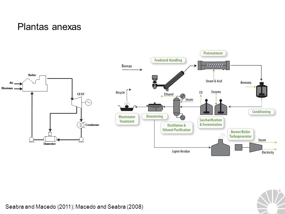 Plantas anexas Seabra and Macedo (2011); Macedo and Seabra (2008)