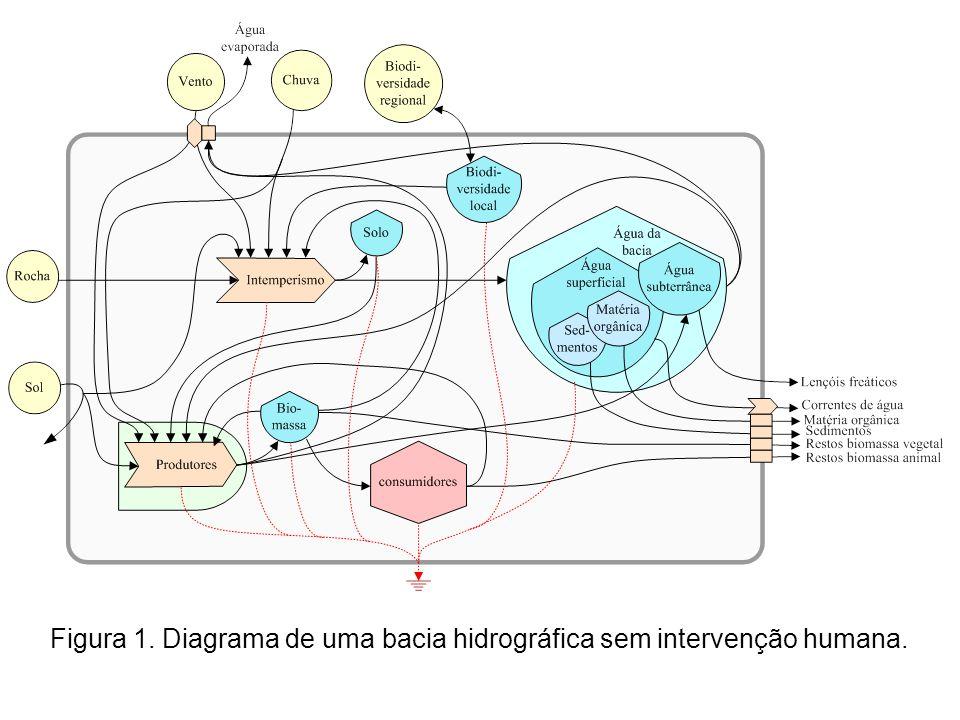 Figura 1. Diagrama de uma bacia hidrográfica sem intervenção humana.