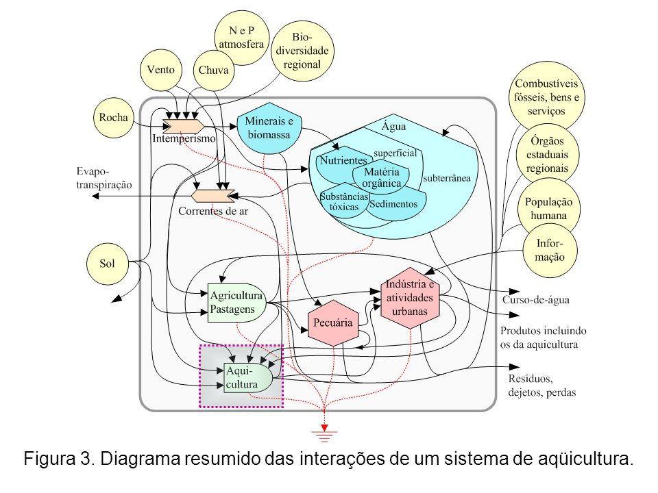 Figura 3. Diagrama resumido das interações de um sistema de aqüicultura.