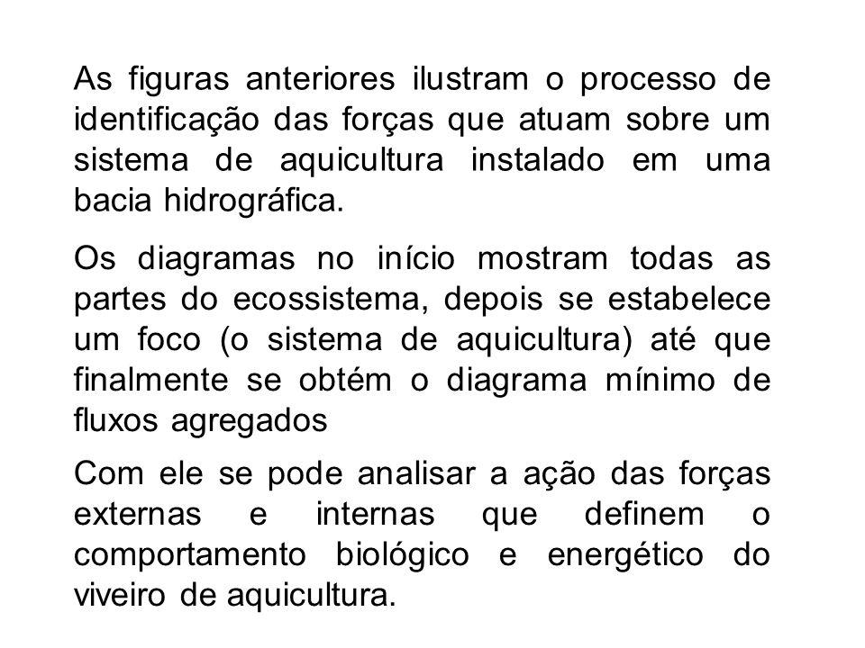 As figuras anteriores ilustram o processo de identificação das forças que atuam sobre um sistema de aquicultura instalado em uma bacia hidrográfica.