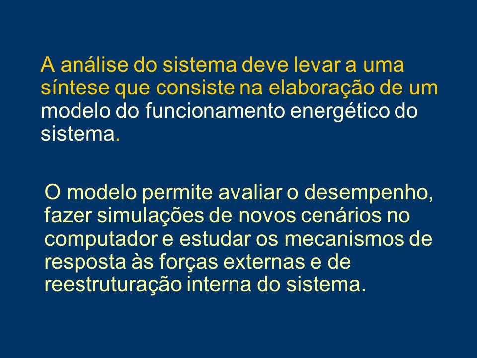 A análise do sistema deve levar a uma síntese que consiste na elaboração de um modelo do funcionamento energético do sistema.