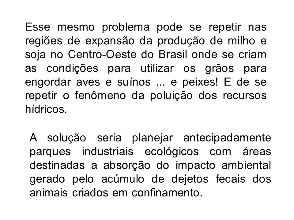 Esse mesmo problema pode se repetir nas regiões de expansão da produção de milho e soja no Centro-Oeste do Brasil onde se criam as condições para utilizar os grãos para engordar aves e suínos ... e peixes! E de se repetir o fenômeno da poluição dos recursos hídricos.