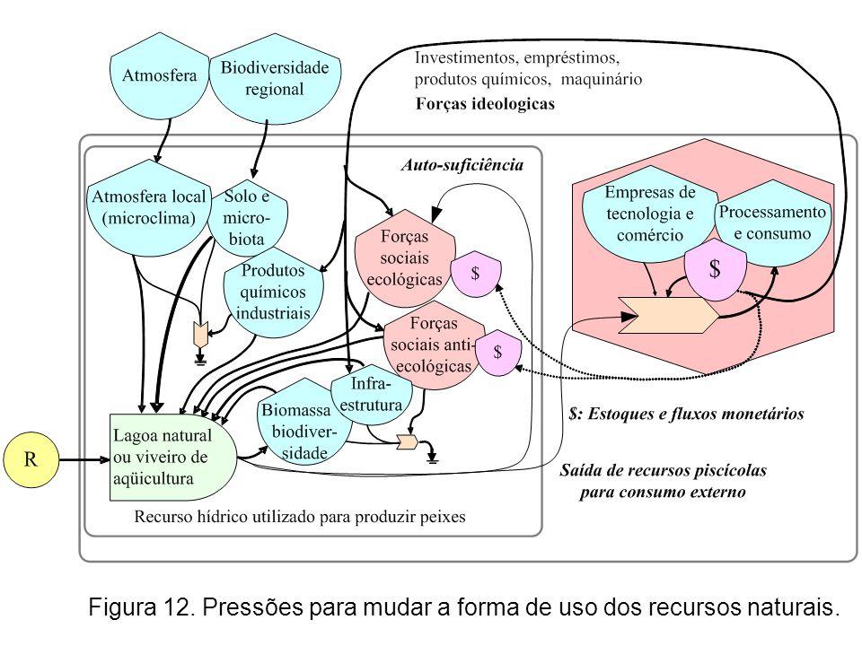Figura 12. Pressões para mudar a forma de uso dos recursos naturais.