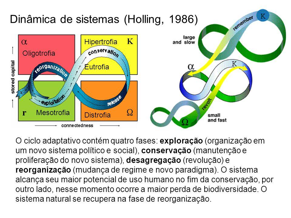 Dinâmica de sistemas (Holling, 1986)