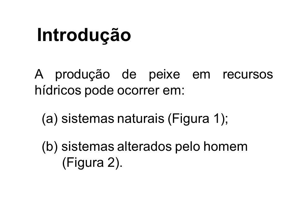 Introdução A produção de peixe em recursos hídricos pode ocorrer em: