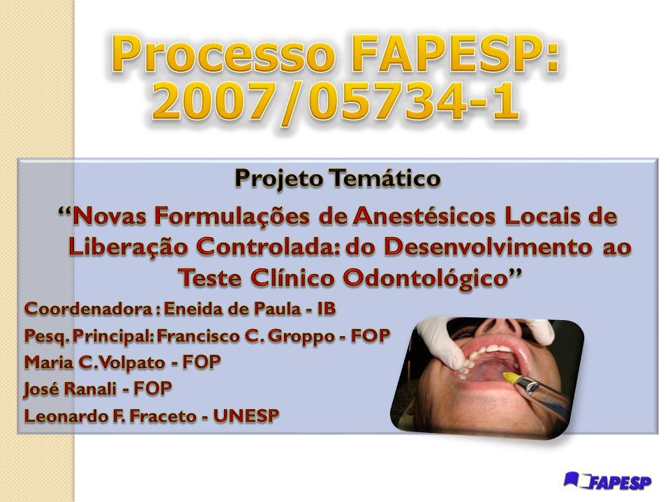 Processo FAPESP: 2007/05734-1 Projeto Temático