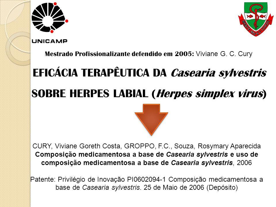 EFICÁCIA TERAPÊUTICA DA Casearia sylvestris