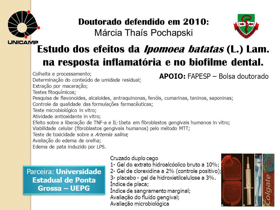 Estudo dos efeitos da Ipomoea batatas (L.) Lam.