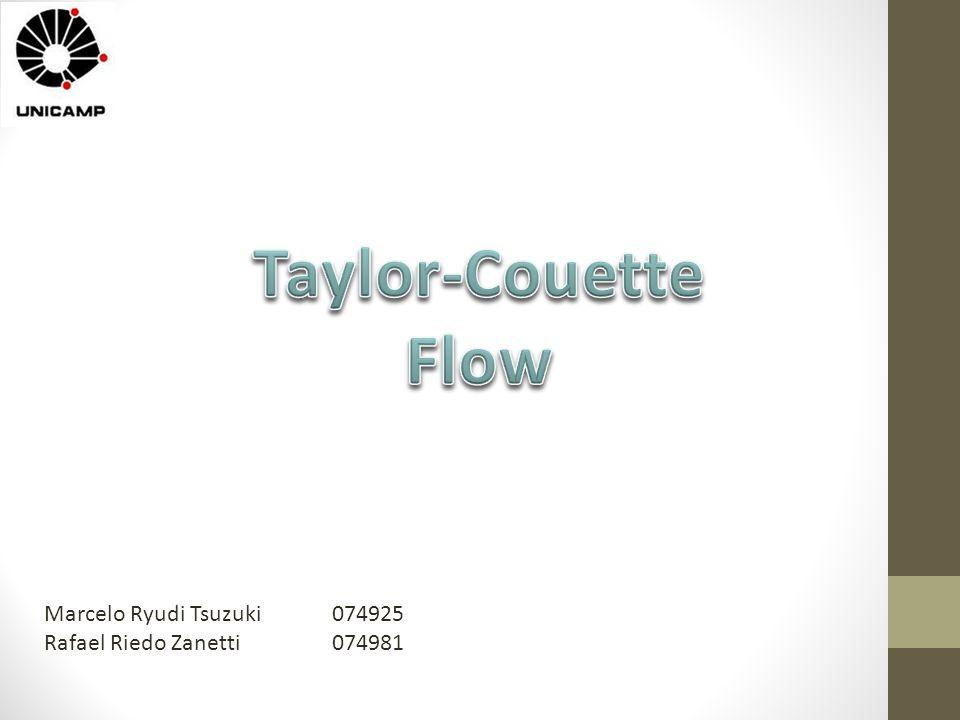 Taylor-Couette Flow Marcelo Ryudi Tsuzuki 074925