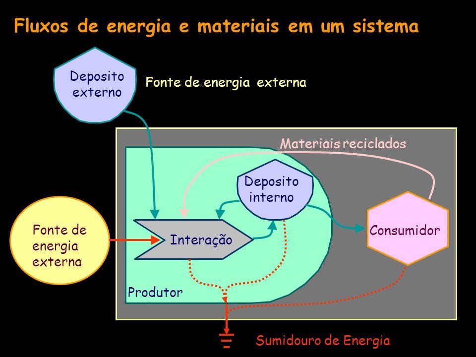 Fluxos de energia e materiais em um sistema