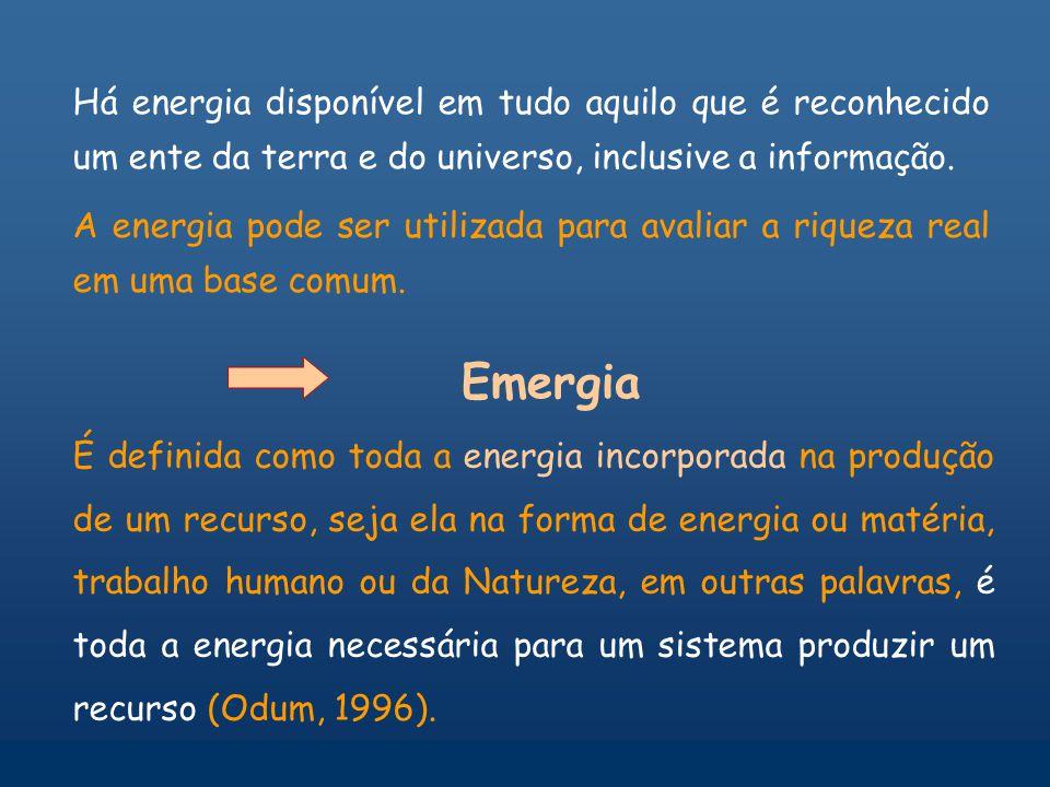 Há energia disponível em tudo aquilo que é reconhecido um ente da terra e do universo, inclusive a informação.