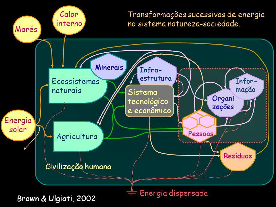 Transformações sucessivas de energia no sistema natureza-sociedade.