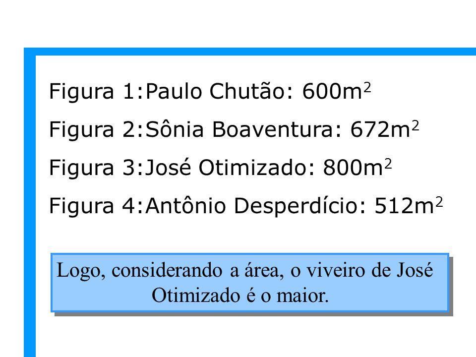 Figura 1:Paulo Chutão: 600m2