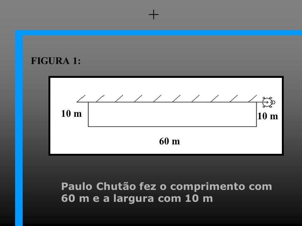 + FIGURA 1: 10 m 10 m 60 m Paulo Chutão fez o comprimento com 60 m e a largura com 10 m