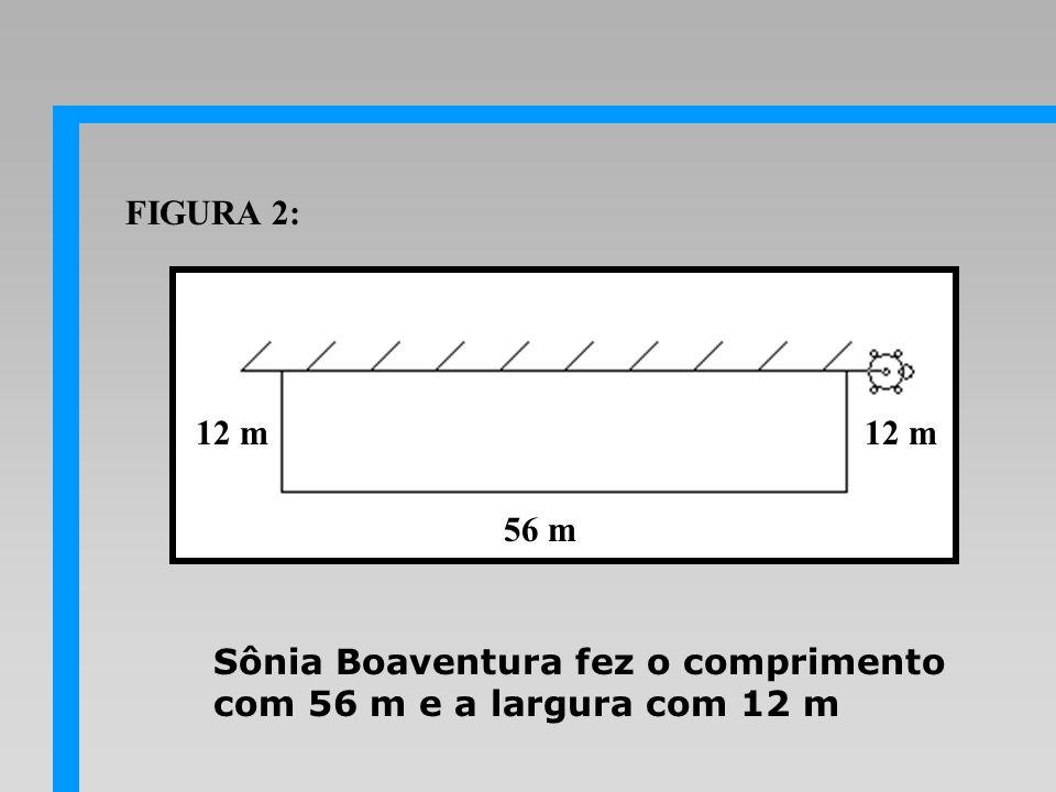 FIGURA 2: 12 m 12 m 56 m Sônia Boaventura fez o comprimento com 56 m e a largura com 12 m