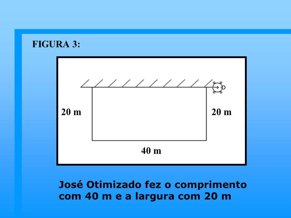 FIGURA 3: 20 m 20 m 40 m José Otimizado fez o comprimento com 40 m e a largura com 20 m