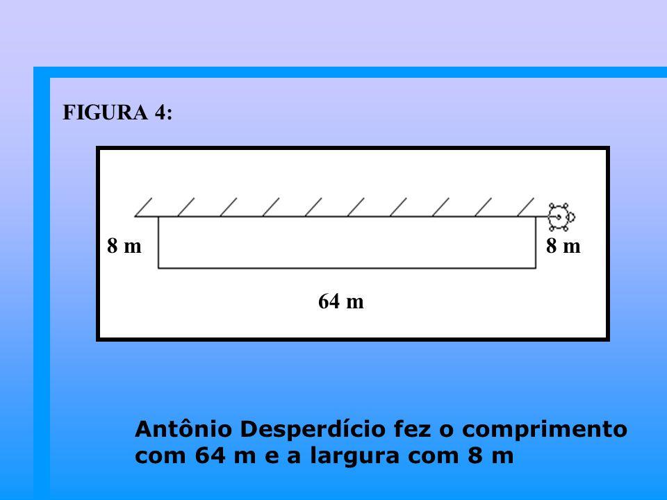 FIGURA 4: 8 m 8 m 64 m Antônio Desperdício fez o comprimento com 64 m e a largura com 8 m