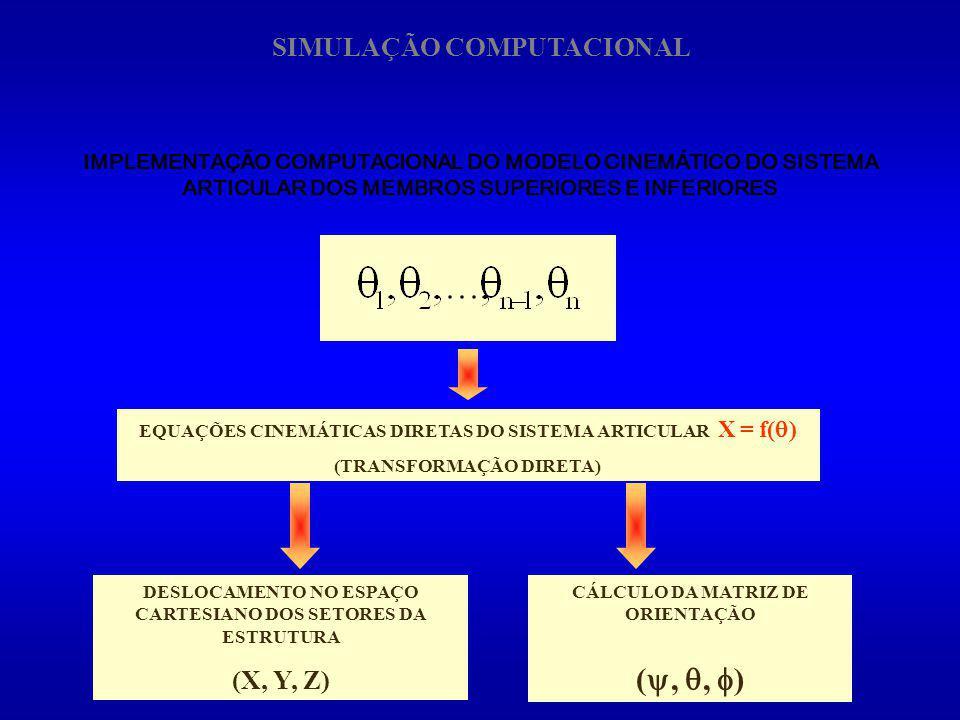 (, , ) SIMULAÇÃO COMPUTACIONAL (X, Y, Z)