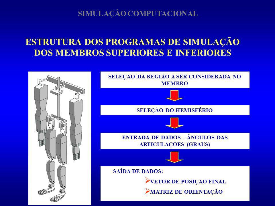 SIMULAÇÃO COMPUTACIONAL
