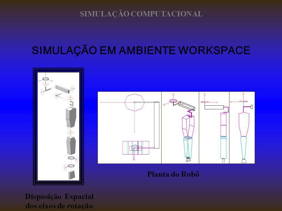 SIMULAÇÃO EM AMBIENTE WORKSPACE