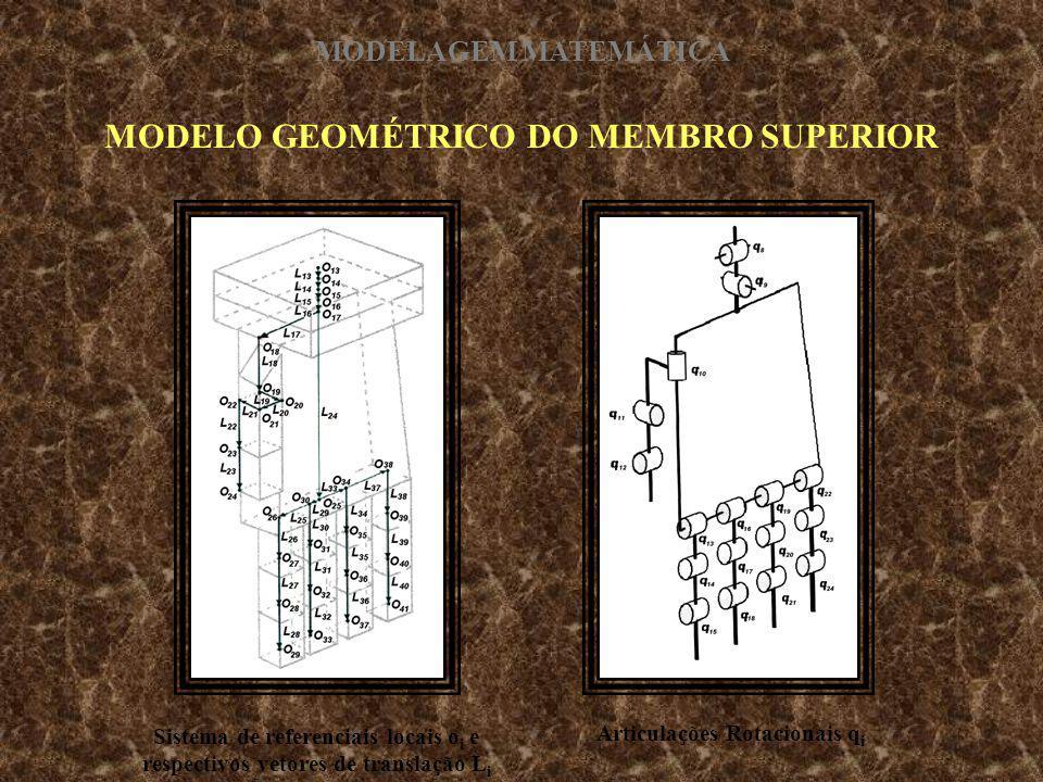 MODELO GEOMÉTRICO DO MEMBRO SUPERIOR