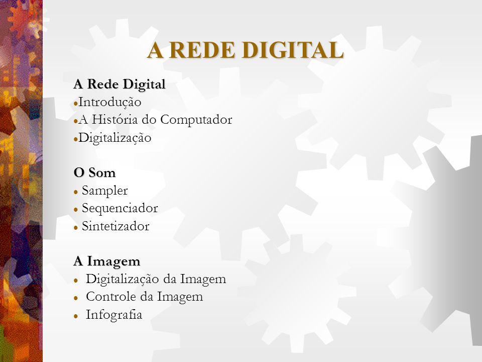 A REDE DIGITAL A Rede Digital Introdução A História do Computador