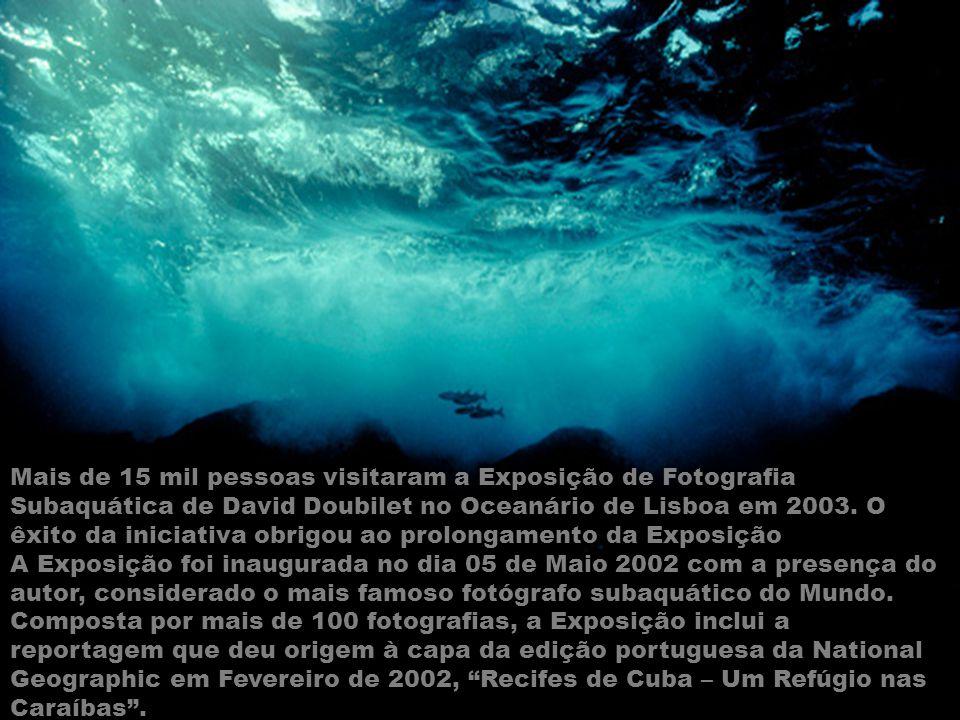 Mais de 15 mil pessoas visitaram a Exposição de Fotografia Subaquática de David Doubilet no Oceanário de Lisboa em 2003. O êxito da iniciativa obrigou ao prolongamento da Exposição