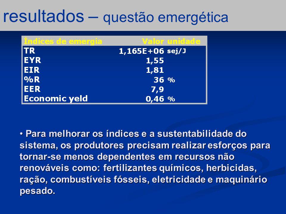 resultados – questão emergética